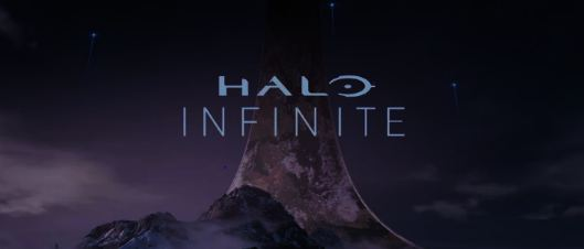 Halo Infinite Game