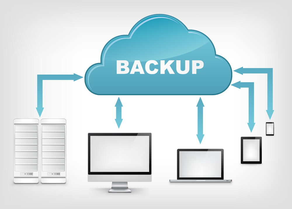 Multiple back up services