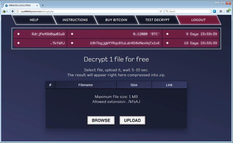 payment website princess ransomware