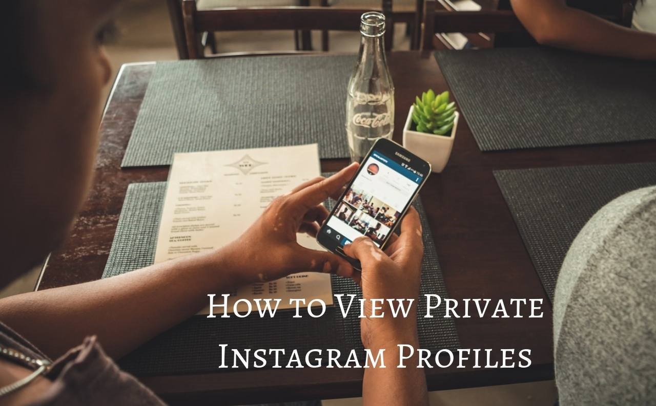 View Private Instagram Account And Profiles