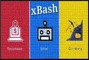 https://www.howtoremoveit.info/images/postimage/2536/xbash_malware_orginal_thumb.jpg